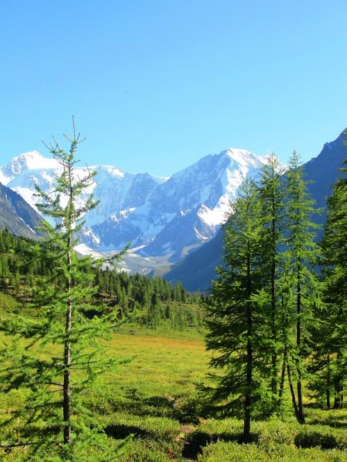 Алтай, фото, Белуха