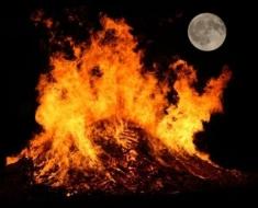 1-burning-cats_000004640244_Small