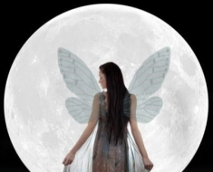 1-fairy-with-transparent-wings_30401840_SMALL