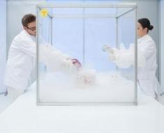 10-cryogenic