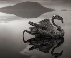 Lake-Natron