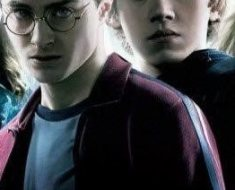 10a-harry-potter-main-characters