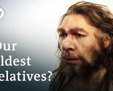 Топ-10 выдающихся родственников древнего человека